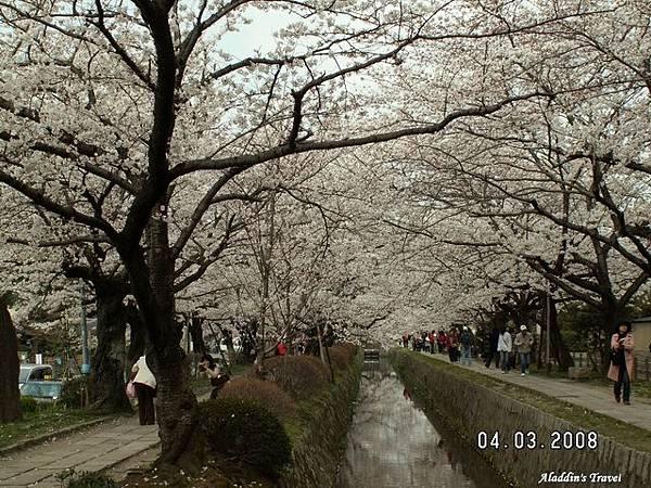 0403A銀閣寺36.jpg