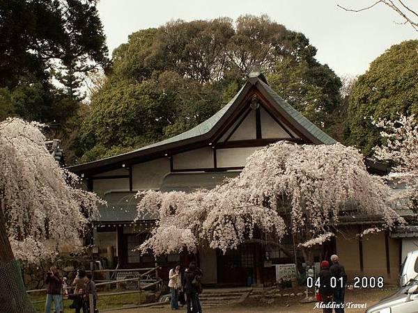 0401G冰室神社1.jpg