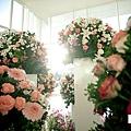游騰凱攝影工作室,台中婚攝,新人推薦,婚禮攝影,有Fu婚攝_06.jpg