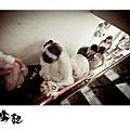 婚禮攝影,台中婚攝,有FU婚攝,新人推薦,台中ALAN30