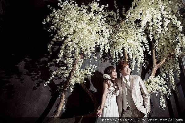 自助婚紗,台中自助婚紗,韓風婚紗,台中婚攝,新人推薦_8562