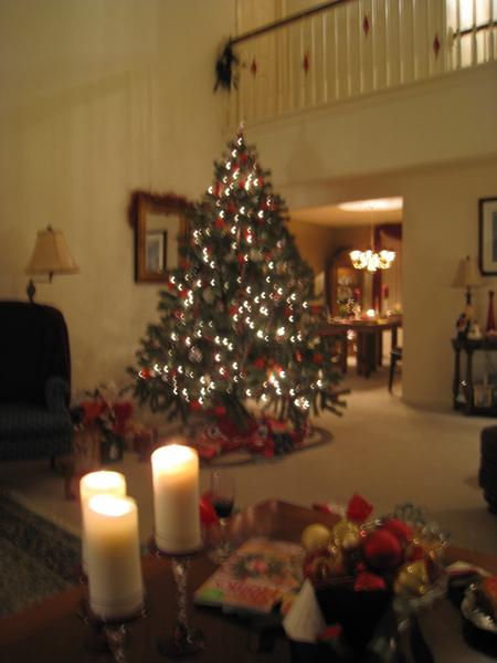 老師家的聖誕樹