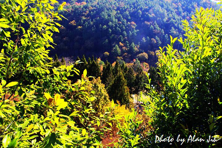 桃山瀑布-1