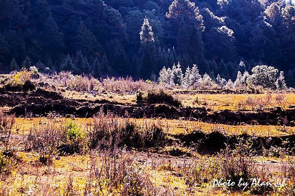 騰沖火山3.jpg