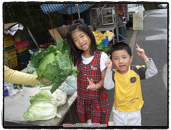 2010武陵農場之旅[Day 2]26.jpg