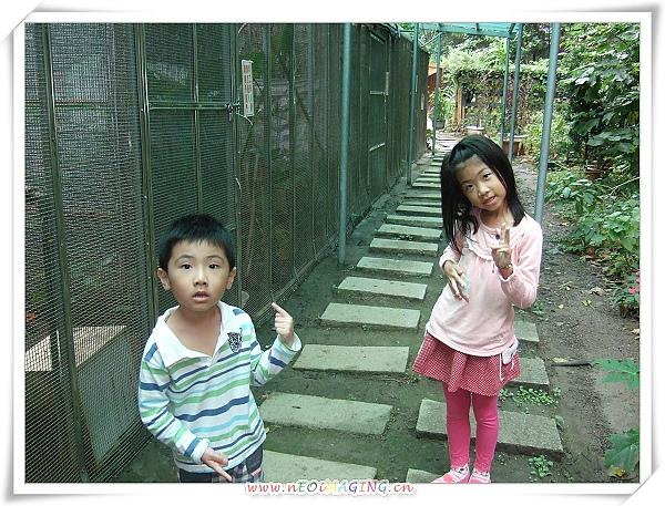 芝山文化生態綠園[2010台北花遊記]11.jpg