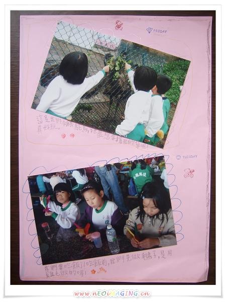 復興國小三年級校外教學[東鋒金雞蛋主題農場]7.jpg