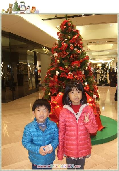 台北市信義區聖誕樹23.jpg