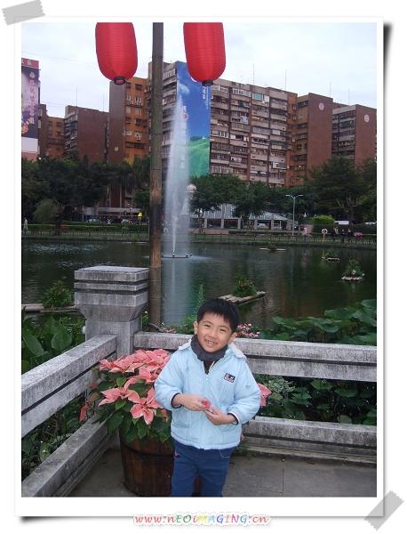 2011台北花卉展[青年公園]7.jpg