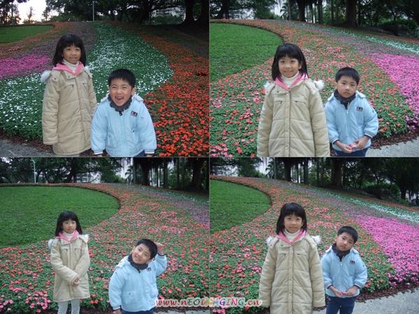 2011台北花卉展[青年公園]10.jpg