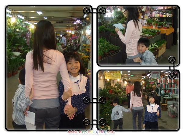板橋花市5