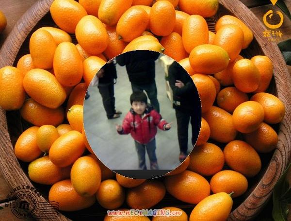 橘之鄉蜜餞形象館II7