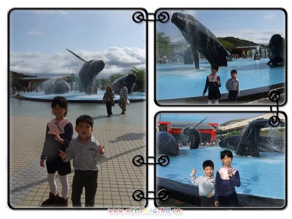 國立海洋生物博物館[屏東海生館]10