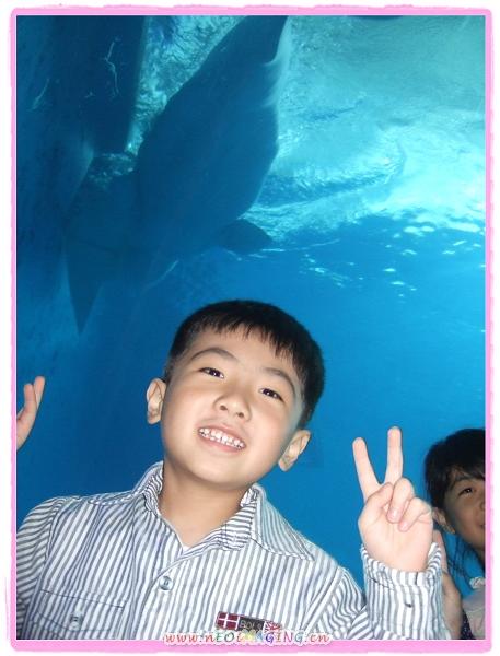 國立海洋生物博物館[屏東海生館]24