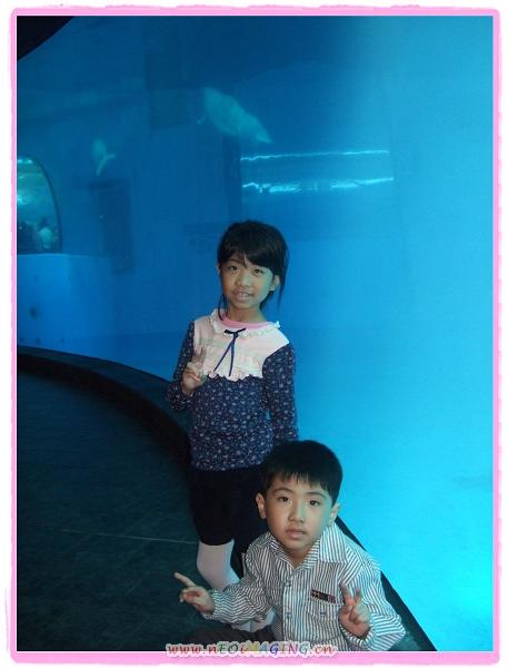 國立海洋生物博物館[屏東海生館]25