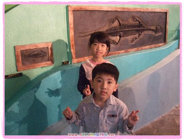 國立海洋生物博物館[屏東海生館]46