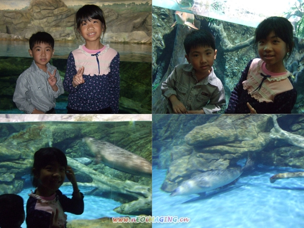 國立海洋生物博物館[屏東海生館]47