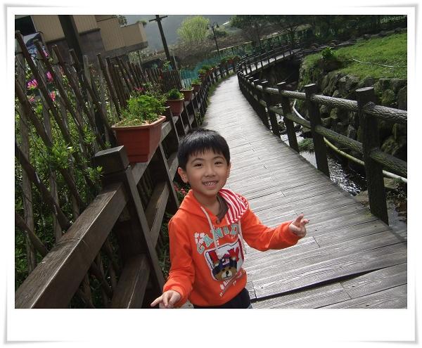 2012竹子湖海芋季1