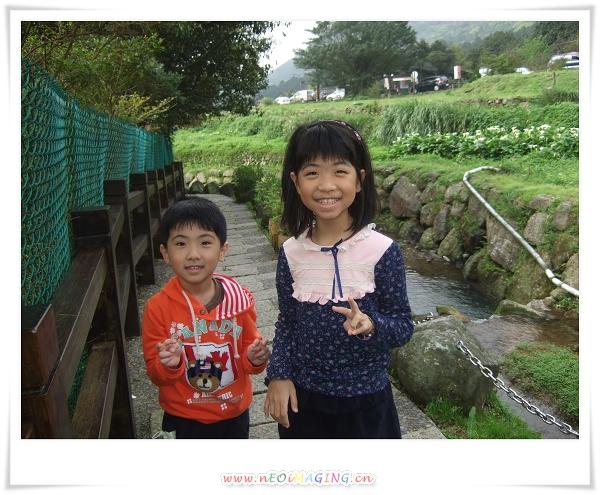 2012竹子湖海芋季4