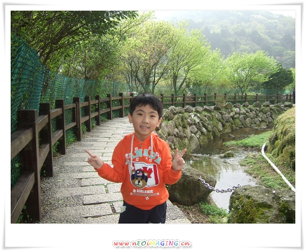 2012竹子湖海芋季5