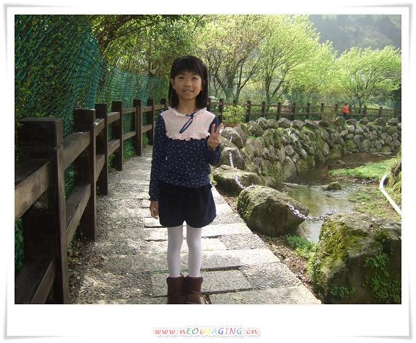2012竹子湖海芋季6