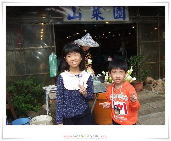 2012竹子湖海芋季19