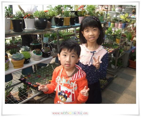 2012竹子湖海芋季24