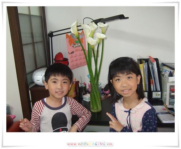 2012竹子湖海芋季28