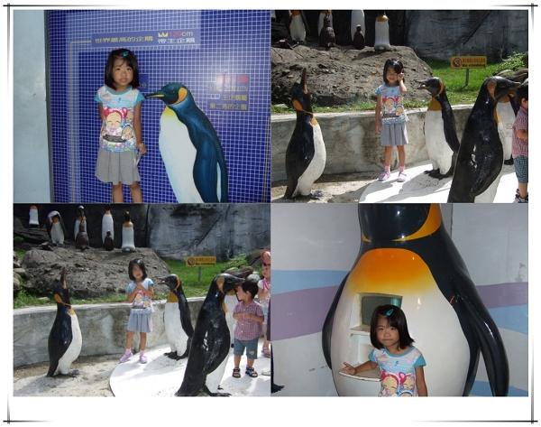台北市立動物園2
