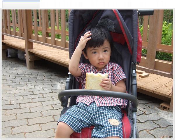 台北市立動物園3