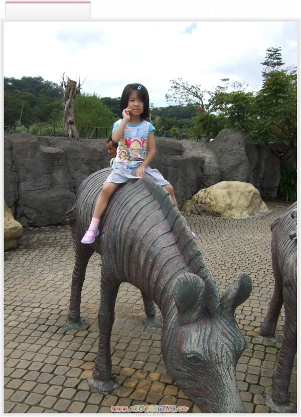 台北市立動物園8