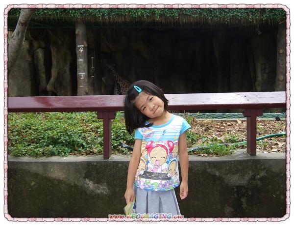 台北市立動物園9