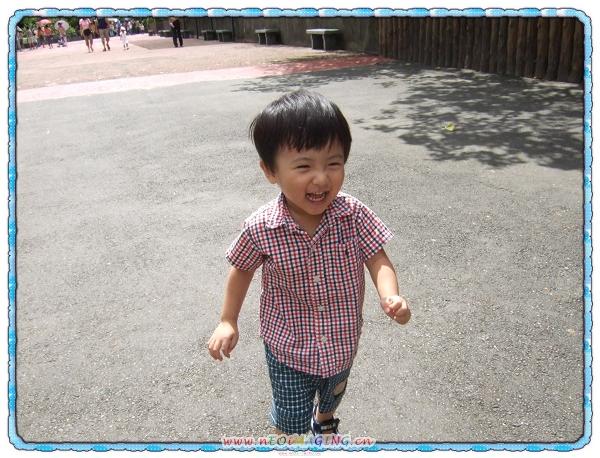 台北市立動物園10