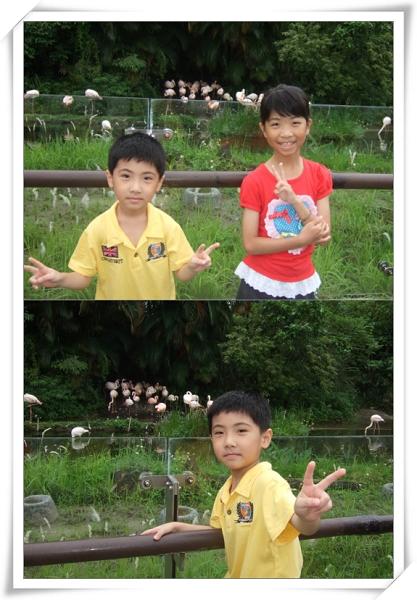 台北市立動物園II2