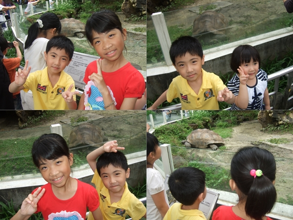 台北市立動物園II6