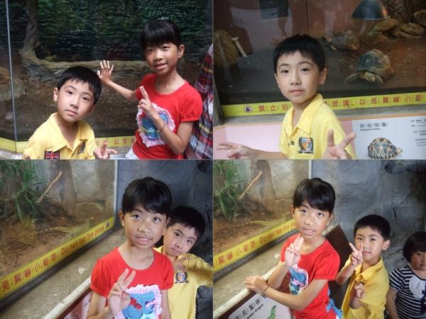 台北市立動物園II8