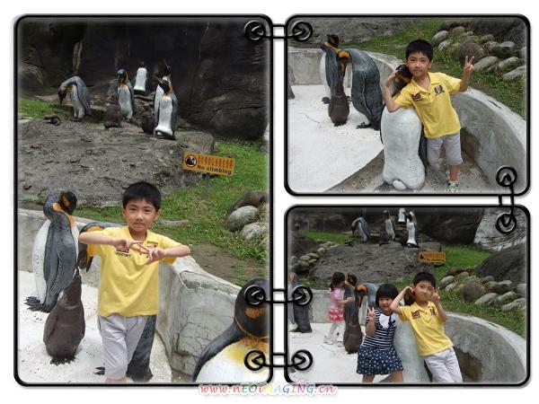 台北市立動物園II10
