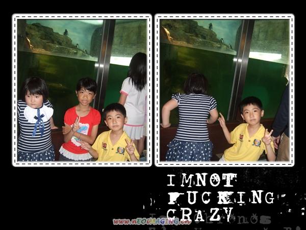 台北市立動物園II12