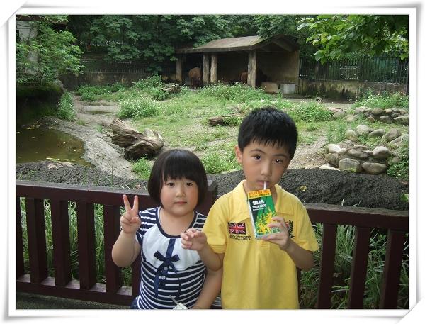 台北市立動物園II15