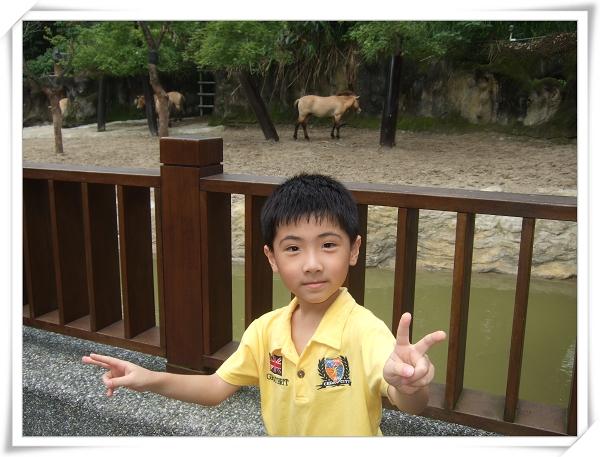 台北市立動物園II17