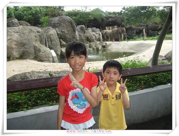 台北市立動物園II19