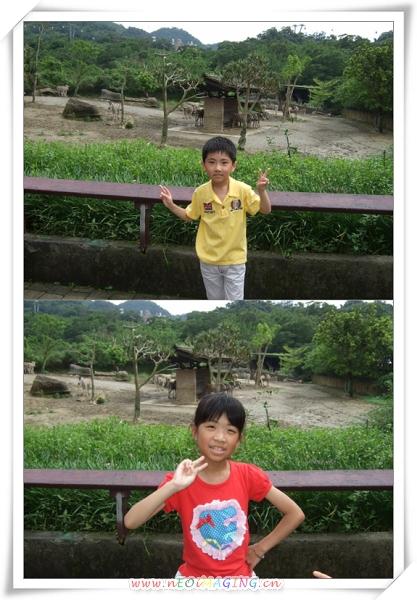 台北市立動物園II21