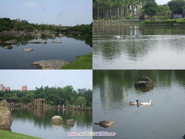 羅東運動公園11