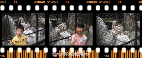 新竹市立動物園II6