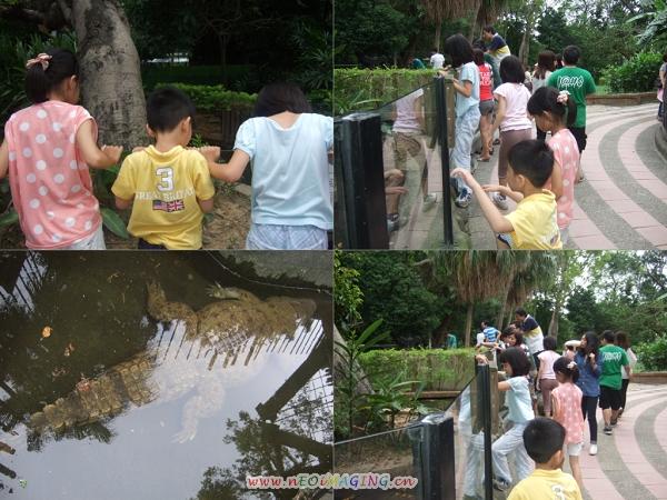 新竹市立動物園II9