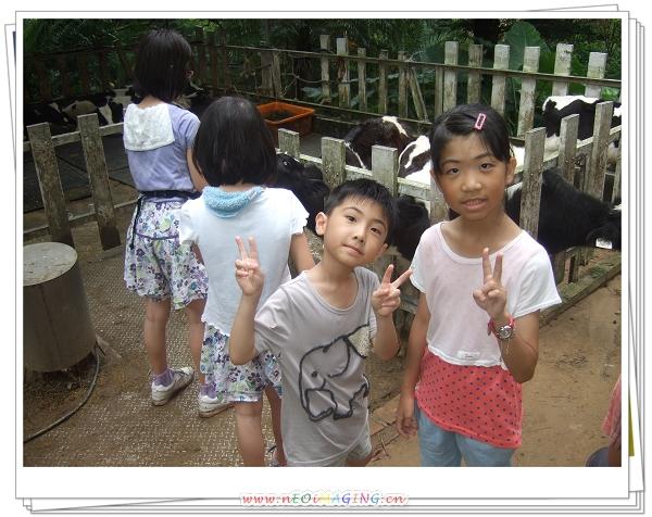 四方鮮乳牧場[苗栗竹南]8