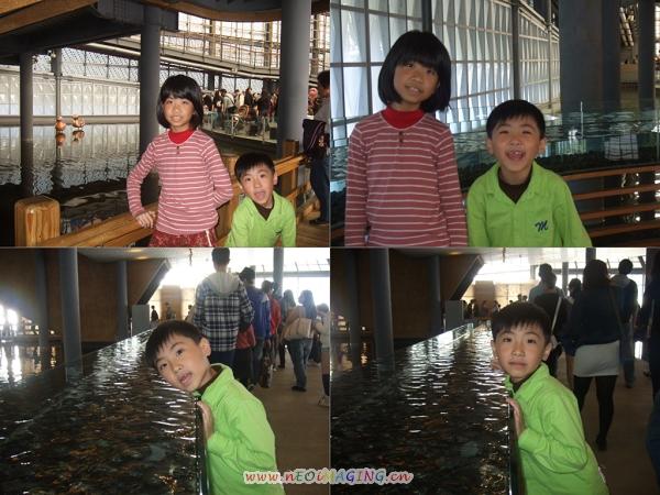 2013台北燈節在花博14