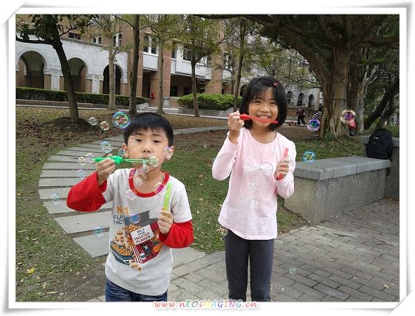 2013臺大杜鵑花節16