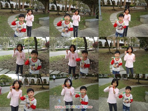 2013臺大杜鵑花節20