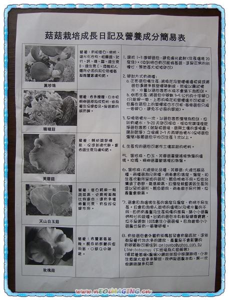 菇菇太空超值包[菇菇世家]3